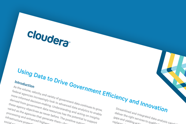 Using Data to Drive Government Efficiency and Innovation - White Paper